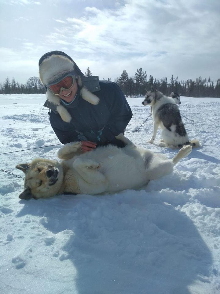 Lisa und Schlittenhunde